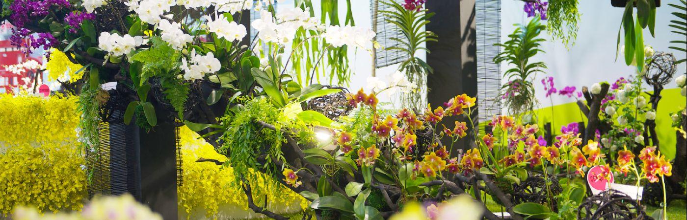 Floralies de Nantes 2014