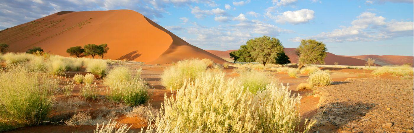 Sossusvlei dans le désert du Namib