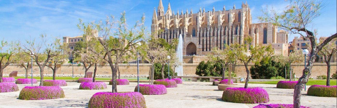 Cathédrale de Palma